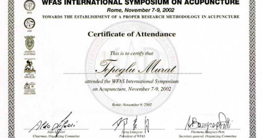 Dr. Murat Topoglu - Diploma 09